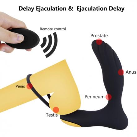 Prostate Simulator